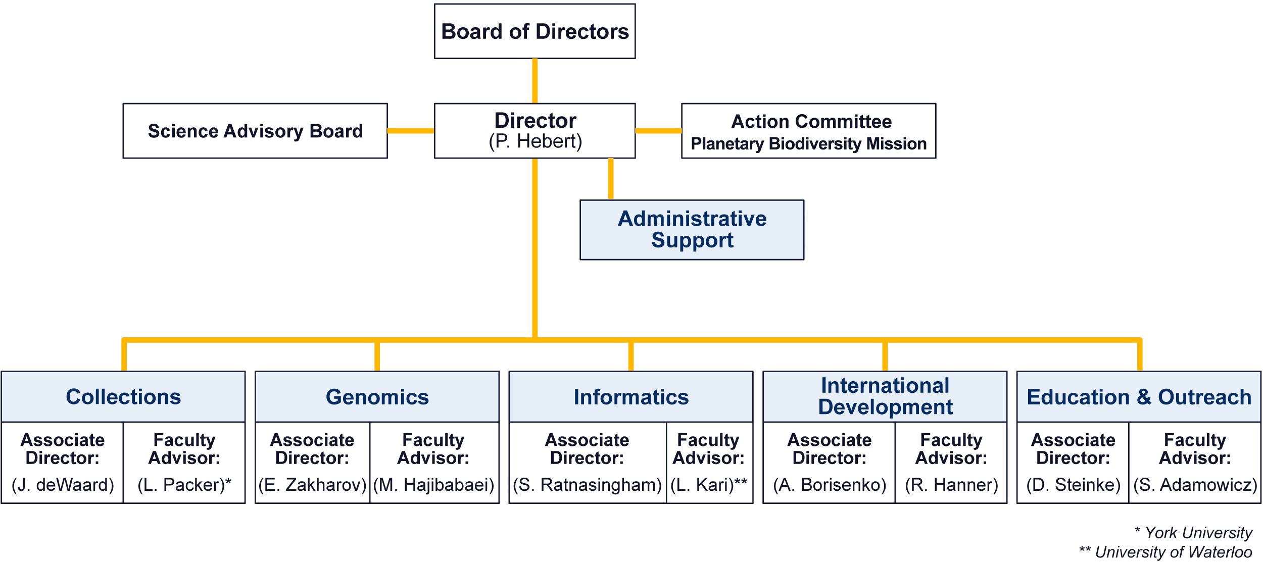 CBG Organization Chart