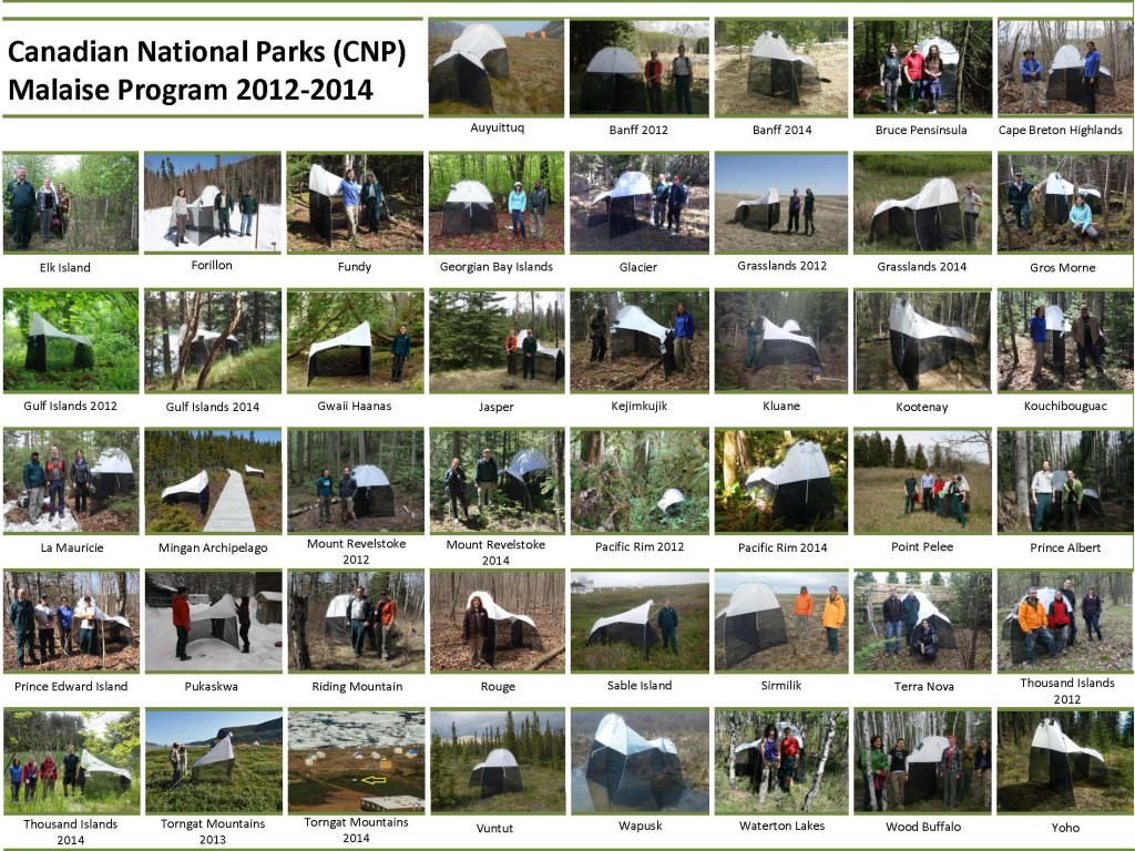 Composite image of Malaise traps from Canadian National Parks from 2012-2014